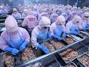 越南企业应抓住机会积极开拓非洲市场