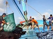 韩国和越南加强渔业管理的经验交换