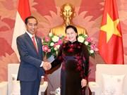 国会主席阮氏金银会见印尼总统佐科·维多多