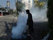 泰国首都曼谷爆发登革热疫情