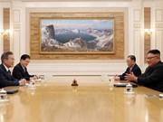 越南对9月19日举行的朝韩首脑会谈取得的成果表示欢迎