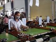 越南引进外资30周年:巴地头顿省引进外资规模位居全国前列