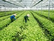 越南槟椥省着力加大农业招商引资力度