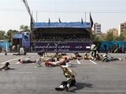 越南强烈反对一切形式的恐怖主义