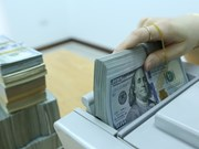 28日越盾兑美元汇率较为稳定  人民币率涨跌互现