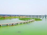 西宁省努力加快各太阳能发电厂项目施工进度