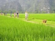 今年前9月宁平省接待游客量达640万人次