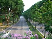 河内市强化绿化领域工作