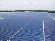 越南首座太阳能发电厂正式投入运营