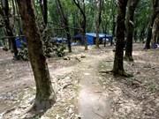 越南橡胶木制品进军世界100个国家和地区