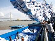 越南大米市场见有起色
