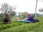 富寿省:新农村建设让山区面貌焕然一新