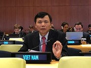 越南参加第73届联合国大会法律委员会会议