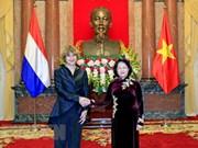 越南国家代主席邓氏玉盛接受三国新任驻越大使递交国书
