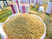 2018年前9月柬埔寨大米出口量减少8.4%
