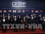 CPTPP将于2018年年底生效
