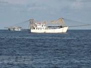 平顺省成为越南最大渔场之一