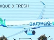 越竹航空公司将开通100条国内外航线