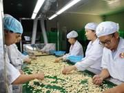 越南农林水产品远销世界200个国家和地区