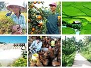 加大整改力度 为农业企业创造便利