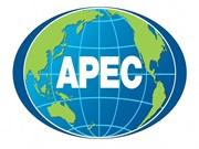 APEC部长会议探讨进一步开拓市场和加快区域经济一体化进程的措施