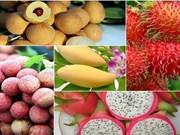 越南蔬果出口恢复强劲增长势头