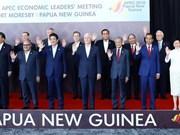 APEC领导人集中讨论自由贸易