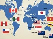 越南批准《跨太平洋伙伴关系全面进展协定》:利益及优势