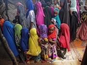 联合国呼吁结束针对妇女和女童的暴力行为