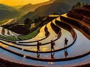 2018年越南文化遗产空间展即将在河内举行
