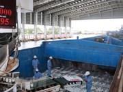 越南金瓯省吸引大量投资项目