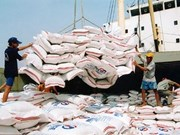越南大米出口情况形势喜人