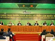 """越共 """"三农""""决议实施10周年全国总结视频会议在河内开幕"""