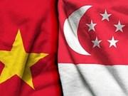 进一步加强越南与新加坡的经济与文化对接
