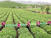 山罗省木洲县扶贫济困帮扶模式发挥积极作用