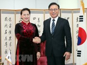 阮氏金银会见越南驻韩国釜山和庆尚南道地区名誉总领事