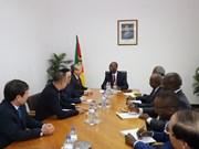 陈国旺对莫桑比克进行工作访问