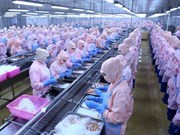 越南虾类产业充分利用深加工优势