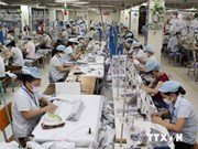 越南与印度进一步促进纺织品贸易