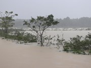 越南中部洪灾致6人死伤失踪,当地经济损失严重