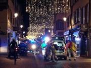 法国斯特拉斯堡市枪案:越南驻法国大使馆需紧密跟踪情况并及时采取公民保护措施