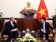 政府副总理范平明会见埃及驻越大使