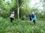越南莱州省可持续减贫工作成效显著