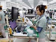 2018年前11月越南软件行业实现营业额40亿美元