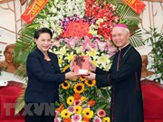 国会主席阮氏金银圣诞节前走访慰问同奈省天主教人士