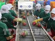 越南前江省出口激增