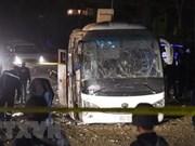 越南游客在埃及金字塔附近遇袭事件: 确认受害者身份