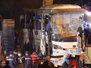 世界多国谴责埃及爆炸袭击事件