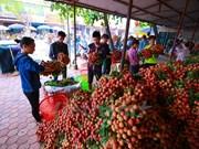 中国进口政策改变   越南部分农产品出口中国遇阻