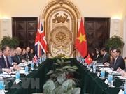 越英外交副部长级政治磋商会在河内举行